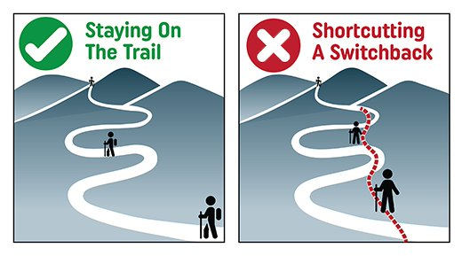 Staying on the trail keeps a trail pristine. Image © https://www.fs.usda.gov